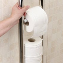 Toilet Roll Holder with Grab Rail